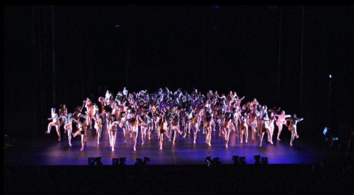 essay dancer in the dark