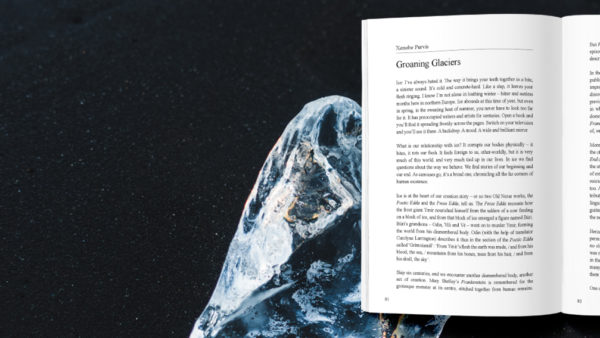 Essay | Groaning Glaciers by Xenobe Purvis